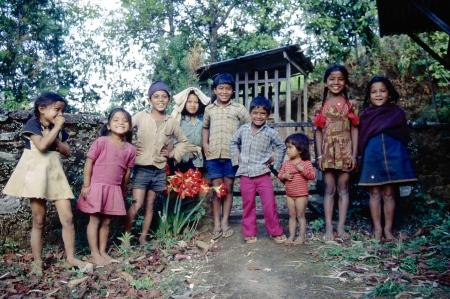 Nepal - 1981749