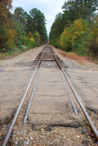 The wooden crossing where Bordelon and fugitive McNair met. The tracks show the direction McNair took.