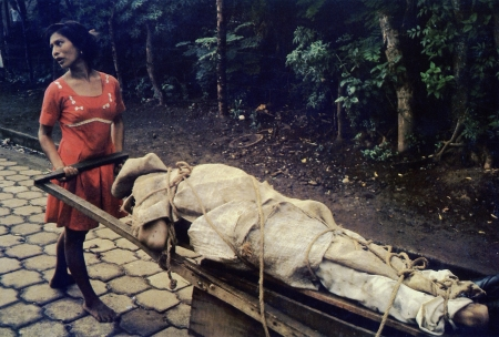 A woman pushes a cart containing the body of her husband, the remains to be buried in her back yard.