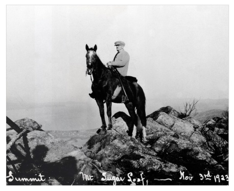 Horse on Sugarloaf 1923. Joe Lacasse jpg.jpg