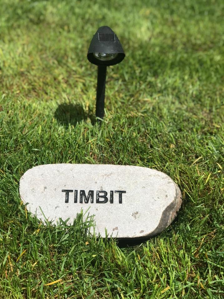 Timbit Memorial Stone.jpg